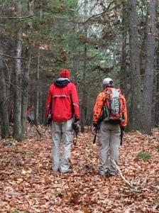 Trailing in leaf debris